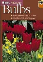 Bulbs for spring - Taylors pocket guide