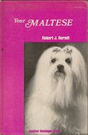 Your Maltese